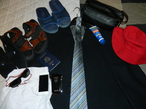 Packing for a cruise vacation is not hard. In David's lecture, packing is made simpler than anticipated.
